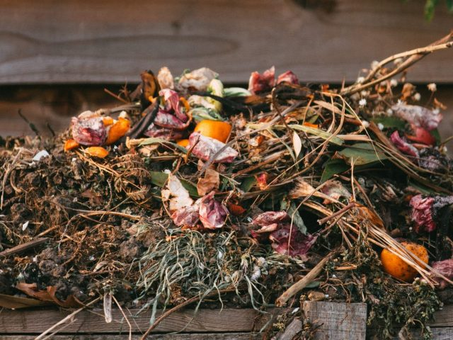 Seven Key Challenges In The Creation of Compostable Clothes